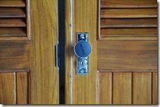 Doors and Raccoon 009