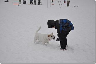 Snow 014