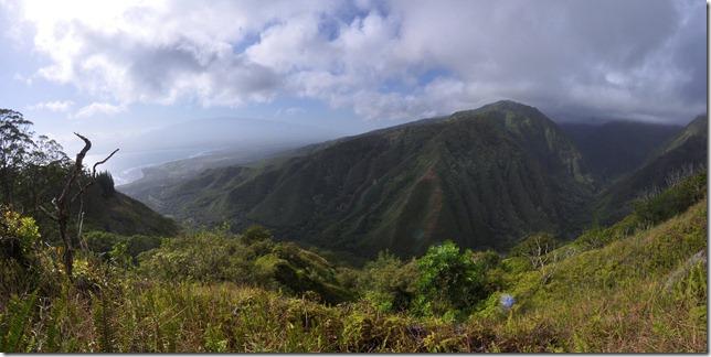 Maui Day 7 009