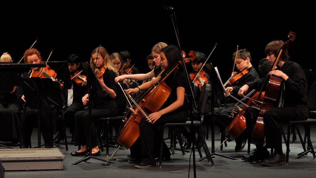 orchestra concert essay